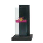 Wood glass award