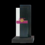 Wood glass award