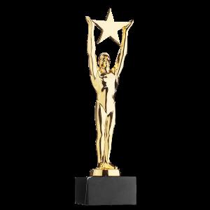 Award 78811