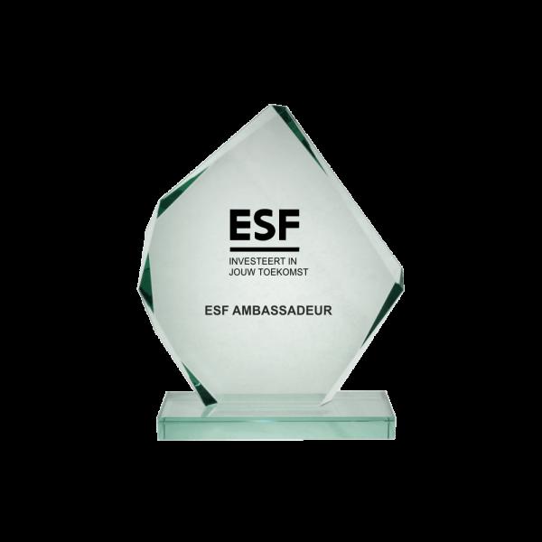 Trofee met gegraveerd logo glas trofee