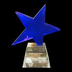 Ster-award