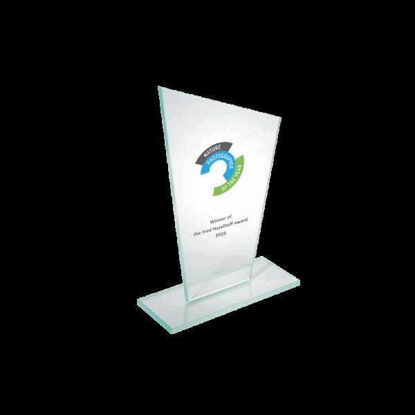 Award in kleur B2b marketing award