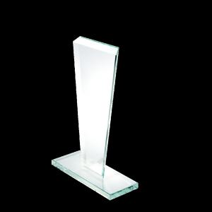 Hera VGJ500 award