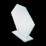 Pan VGJ800 award
