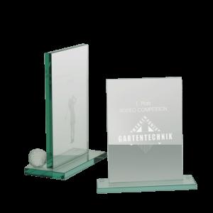 P246 Award